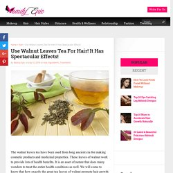 Use Walnut Leaves Tea For Hair! - BeautyEpic