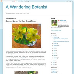 A Wandering Botanist: Common Names