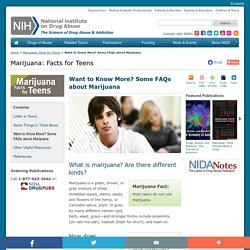 Want to Know More? Some FAQs about Marijuana