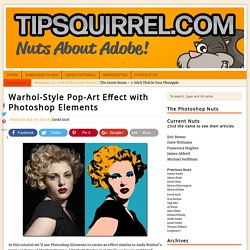 Warhol-Style Pop-Art Effect with Photoshop Elements