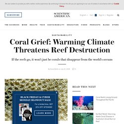 Coral Grief: Warming Climate Threatens Reef Destruction