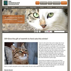 DIY-Give the gift of warmth to feral cats this winter!