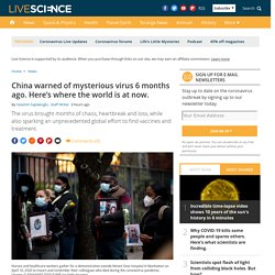 China warned of mysterious virus 6 months ago. Here's where the world is at now.