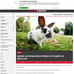EVENING EXPRESS (UK) 10/10/16 Warning as myxomatosis outbreak hits rabbits in North-east