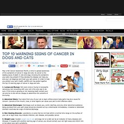 Top 10 Warning Signs of Cancer in Dogs and Cats