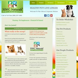 Are Your Pet Vitamins Making Then Sick
