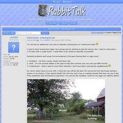 Warren plans - selecting the site : Rabbit Colonies