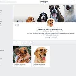 Dcdogtrainers profile on fancy