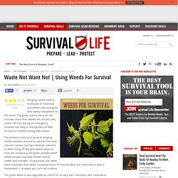 Using Weeds For Survival - Survival Life