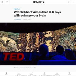 Watch: Short videos that TED says will recharge your brain