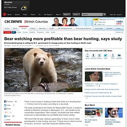 Bear watching more profitable than bear hunting, says study - British Columbia