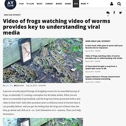 Video of frogs watching video of worms provides key to understanding viral media