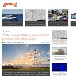"""Water-in-salt"" battery bodes well for greener, safer grid storage"