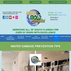 Water Damage Prevention Tips