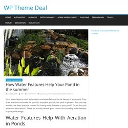 How Water Features Help Your Pond in the summer