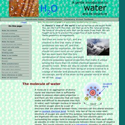 Water and its structure