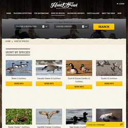 Waterfowl Hunting by Species