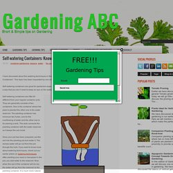 Self-watering Containers: Know the Basics ~ Gardening ABC