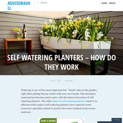 Self Watering Planters – How Do They Work
