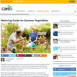 Watering Guide For Summer Vegetables