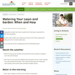 Watering Your Lawn and Garden: When and How