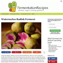 Watermelon Radish Ferment