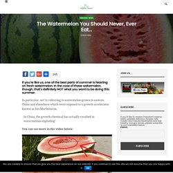 The Watermelon You Should Never, Ever Eat...