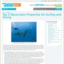 Top 5 Wavecation Properties for Surfing and Diving | Surf Vacations on Wavecation