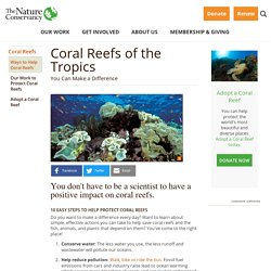 Ways to Help Coral Reefs
