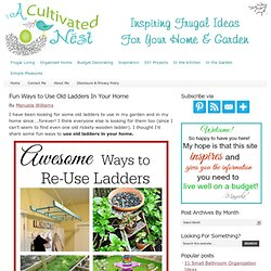 Fun Ways to Use Old Ladders In Your Home — A Cultivated Nest