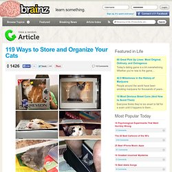 119 Ways to Store and Organize Your Cats