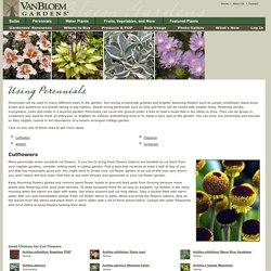 Ways to Use Perennials