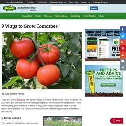 9 Ways to Grow Tomatoes - Bonnie Plants