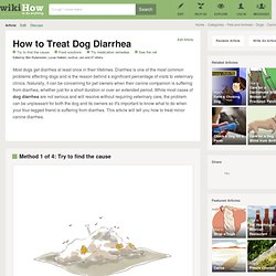 4 Ways to Treat Dog Diarrhea