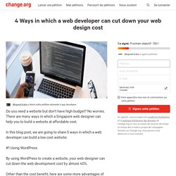 4 Ways in which a web developer can cut down your web design cost