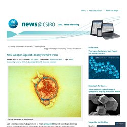 CSIRO 07/04/15 New weapon against deadly Hendra virus