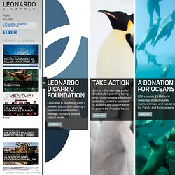 leonardodicaprio.org