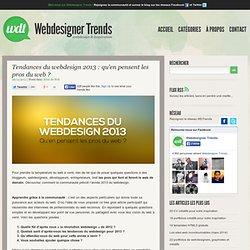Tendances du webdesign 2013 : qu'en pensent les pros du web ?