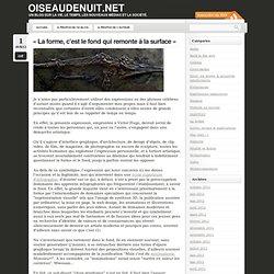 Webdocumentaire « oiseaudenuit.net