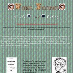 Weber - Fechner Law
