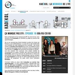 épisode 19 — La WebRadio de l'Institut Français de l'Éducation