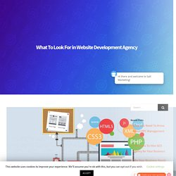 What To Look For in Website Development Agency - Salt Marketing