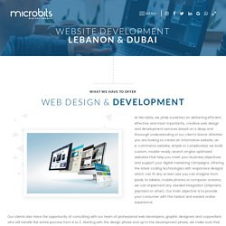 Find the Top Website Development Lebanon - Microbits