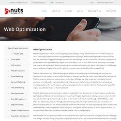 Keyword Optimization – Nuts Software