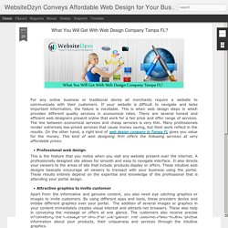 WebsiteDzyn Conveys Affordable Web Design for Your Business: What You Will Get With Web Design Company Tampa FL?