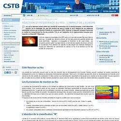 Webzine du CSTB : Réaction et résistance au feu : l'impact de l'Europe