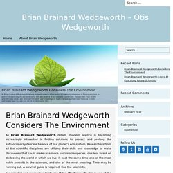 Brian Brainard Wedgeworth Considers The Environment