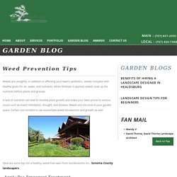 Weed Prevention Tips