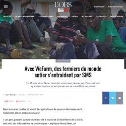 Avec WeFarm, des fermiers du monde entier s'entraident par SMS