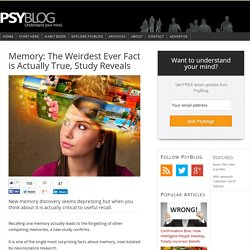 Memory: The Weirdest Ever Fact is Actually True, Study Reveals